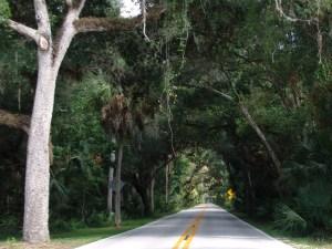 Tomoka State Park | Daytona Beach