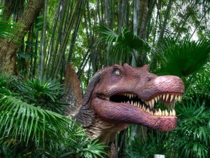 Universals Islands of Adventure | Orlando