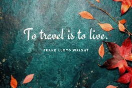 Ultimate Quotes & Sayings | Travel The Food For The Soul
