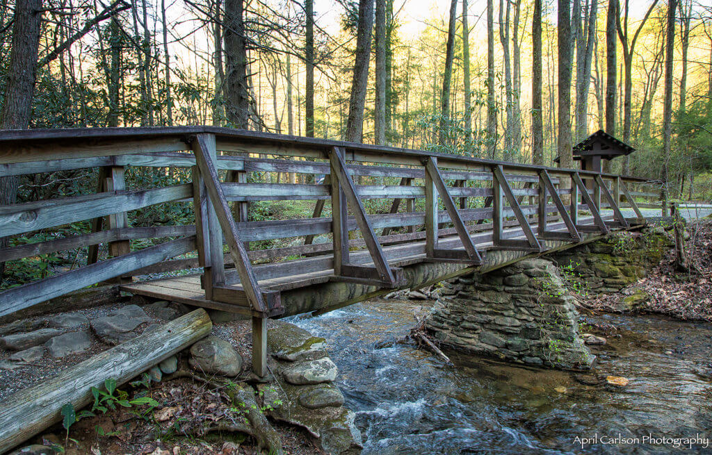 Hiking DeSoto Falls: Bridge on trail
