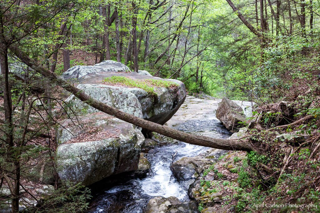 Visiting Cloudland Canyon State Park: Giant Boulder On Trial