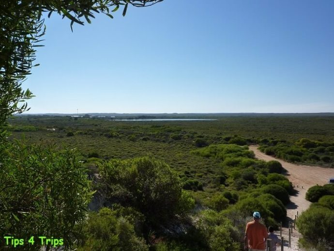 View from Hansens Bay Lookout to Lake Thetis.