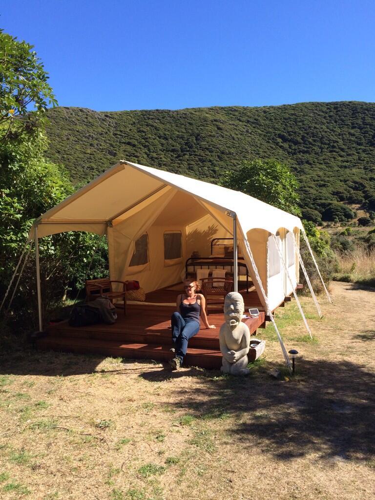 Canopy Camping in Kapiti Island 3