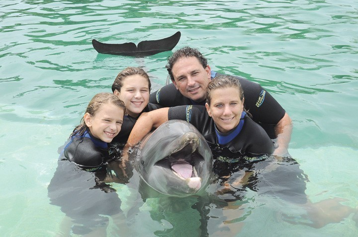 miami swimming with dolphins 3