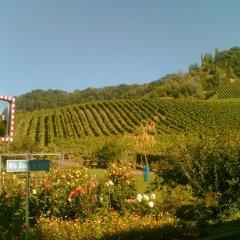 Best 6 Bike Trips To Experience In Switzerland