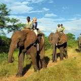South African Incredible Adventures