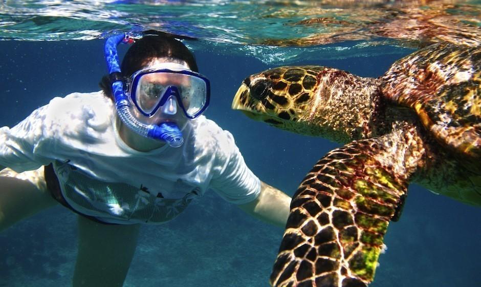 Snorkeling At Pointe aux Piments