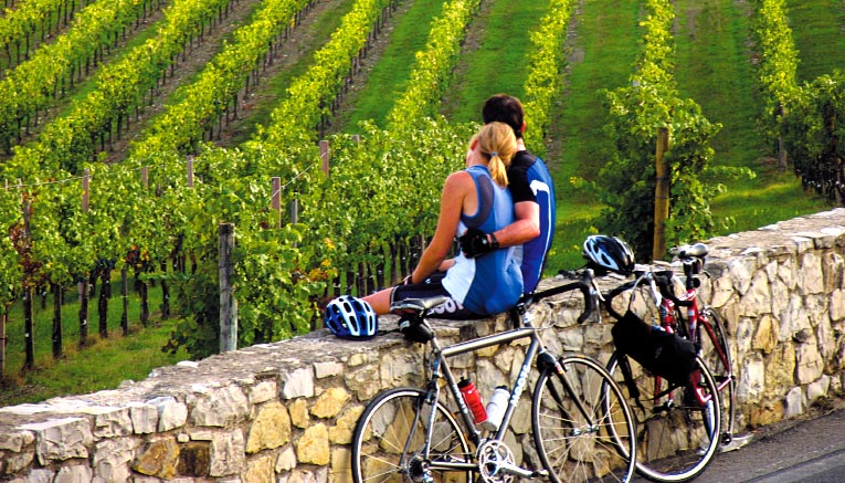 Best Bicycle Tours in Tuscany