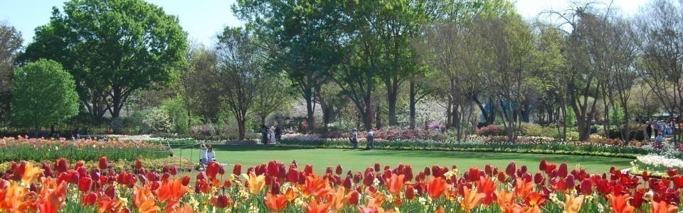 Dallas Outdoor Activities For Visitors