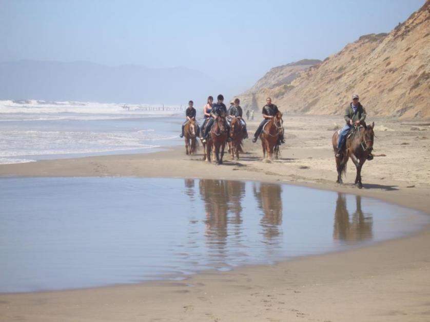 Horseback Riding In Fort Funston, San Francisco
