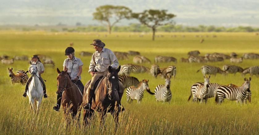 Riding Safaris In Africa