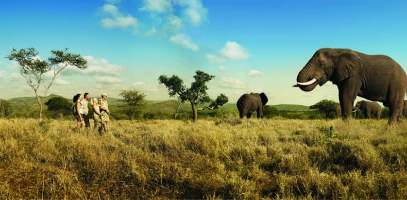 Walking Safaris In Africa
