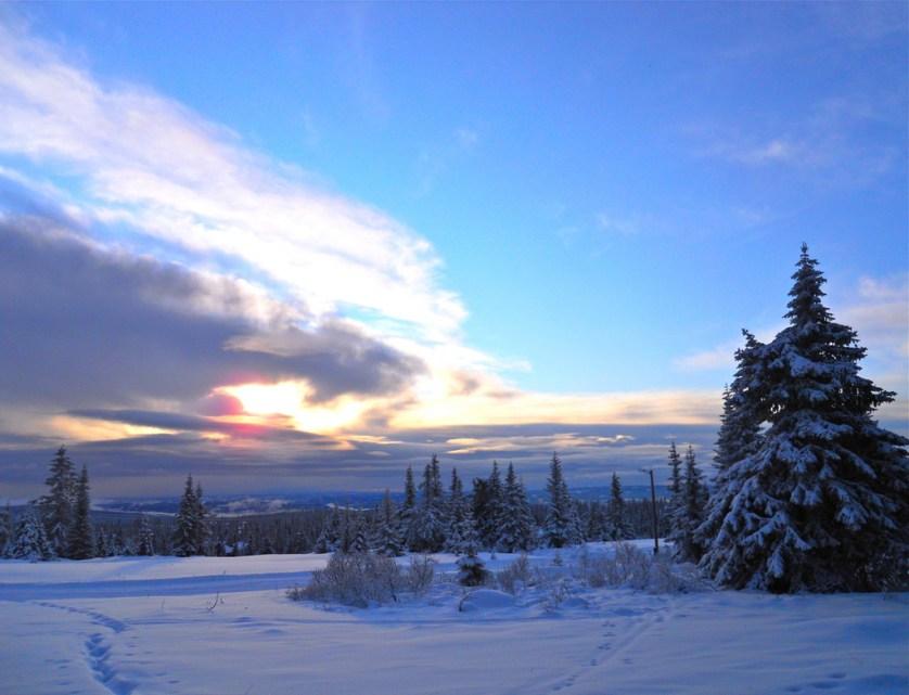 Cross-Country Skiing In Sjusjoen, Norwayc