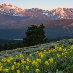 Things To Do In Estes Park, Colorado