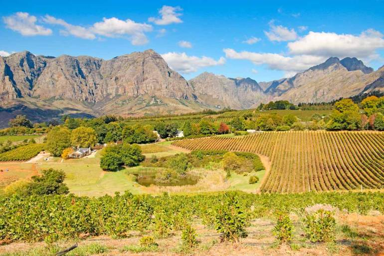 Wonderful things to do in Stellenbosch, South Africa