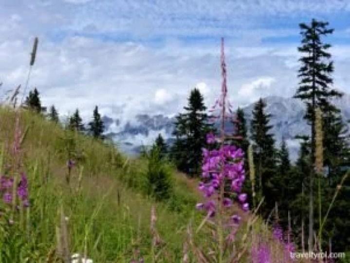View at Muttereralm near Innsbruck.