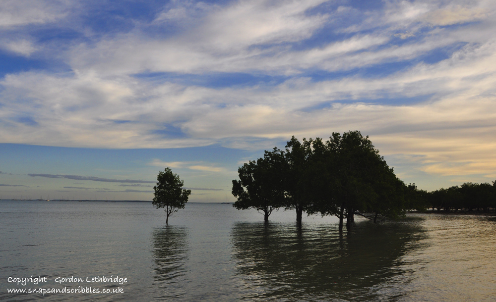 Darwin sunsets - mangroves