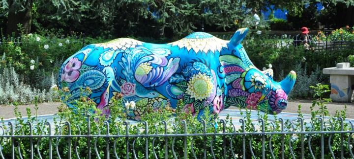 Rhino in Southampton