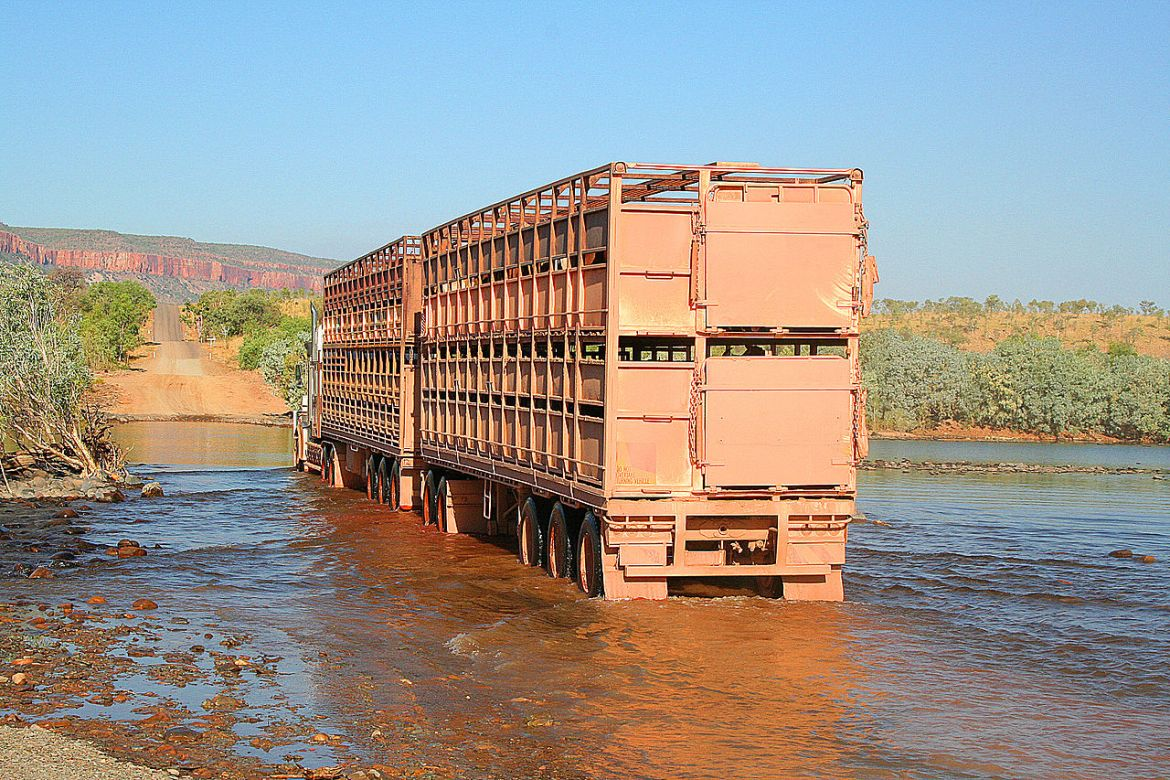 A shorter road train crossing ariver in the Outback © Bäras - source: http://de.wikipedia.org