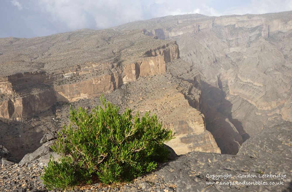 Looking across the canyon to the slopes of Jabal Sham