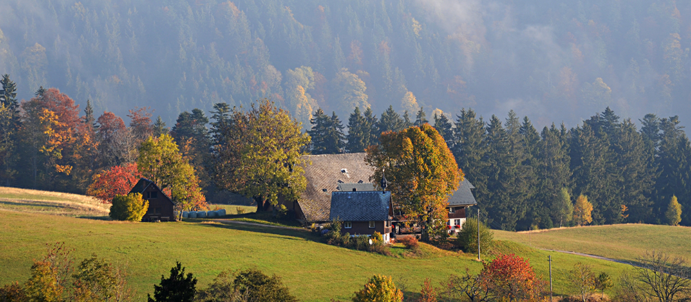 The Black Forest is neither black or all forest. Used with permission of Inntravel