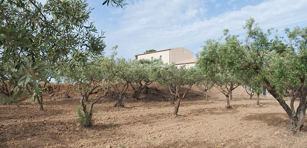 Sicily - Fontes Episcopi