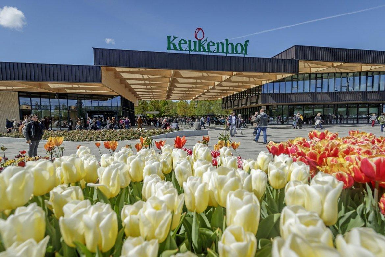 Tulips inside the entrance to Keukenhof