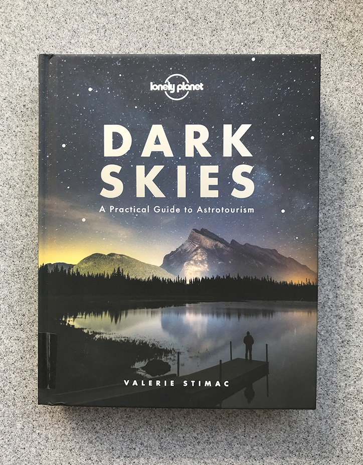 Dark Skies Book Review