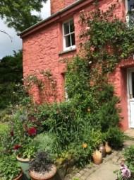 Pembrokeshire Garden 001