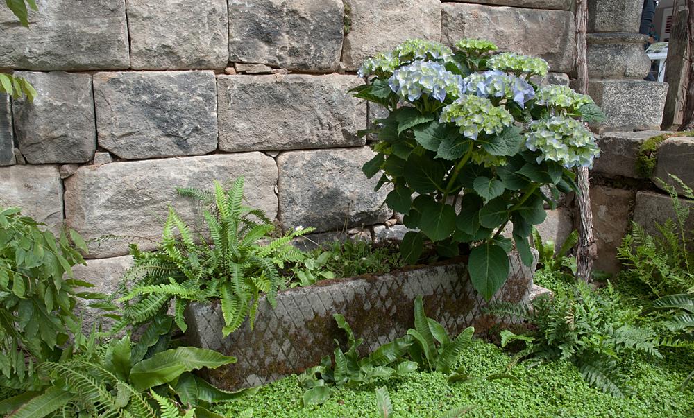 Galicia Garden 006