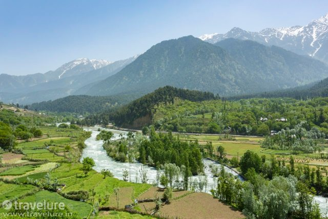 Nature's Own Exotica - Pahalgam