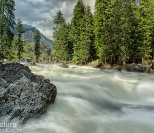 Nature's Own Exotica - Pahalgam