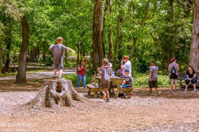 huntsville-botanical-garden-green-heart-rocket-city - Travelure ©