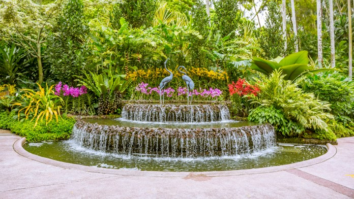 Singapore Botanic Gardens - A Forest in the City with fountains