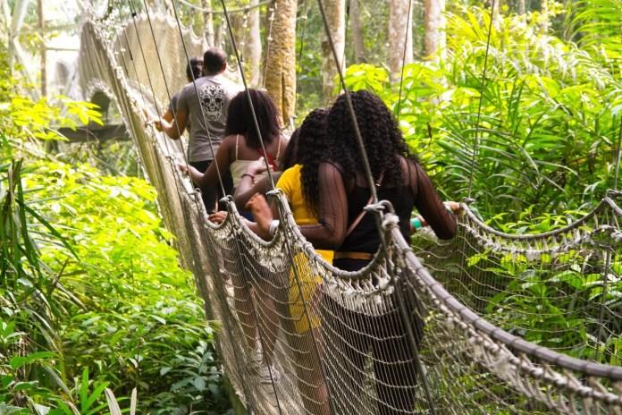 Canopy walk lcc