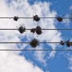 Power lines photography can be beautiful!