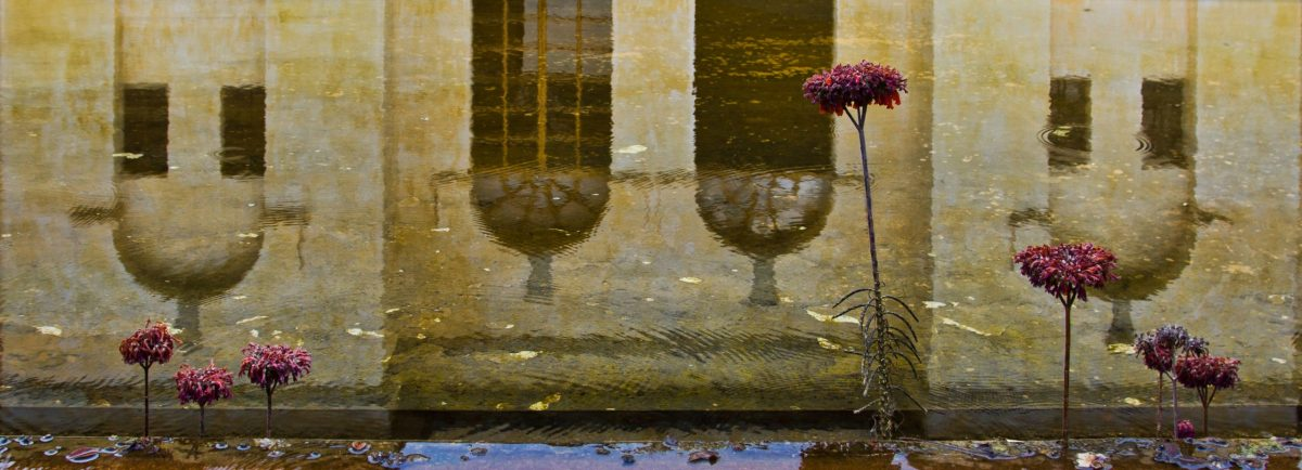 Water reflections at Centro de Artes de San Agustin
