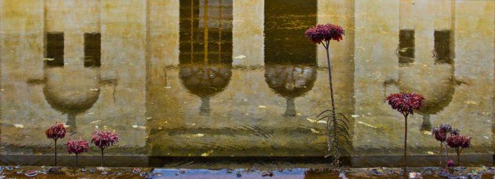 Water reflections at Centro de Artes de San Agustin