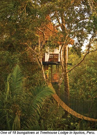 Treehouse Lodge in Iquitos, Peru.