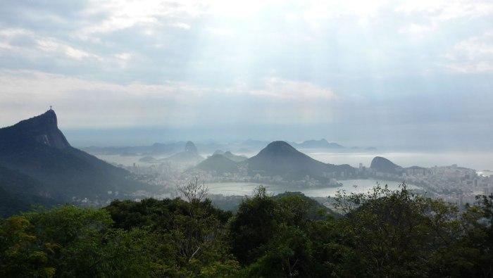 tijuca-rainforest-rio-de-janeiro