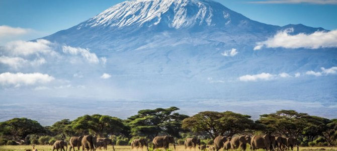 Tourism Attraction To Visit In Kilimanjaro