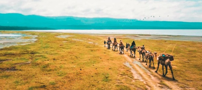 How to be a great trip of Kenya