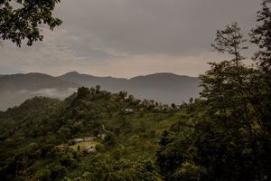 North Bengal Village Tour-Sittong,Tinchuley,Lepchajagat