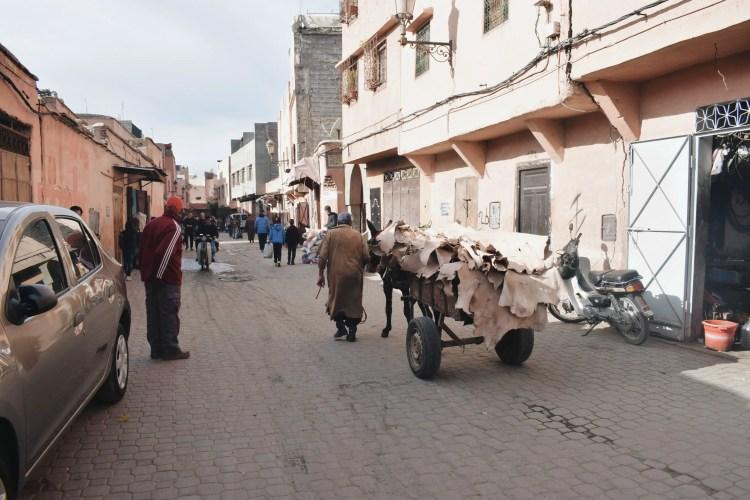 Marrakech Tannery