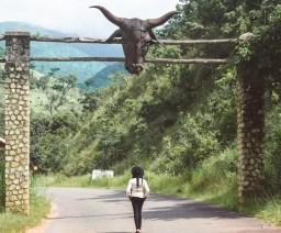 Obudu_Cattle_Ranch[1]