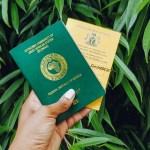 Nigerian Passport Yellow Card