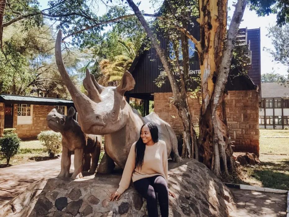 Nairobi National Park Picnic