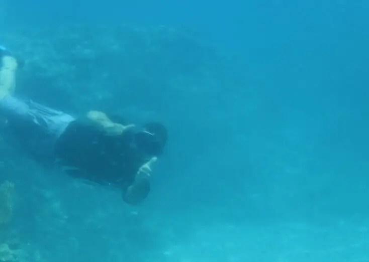 Human fish in the Red Sea, Aqaba, Iordania