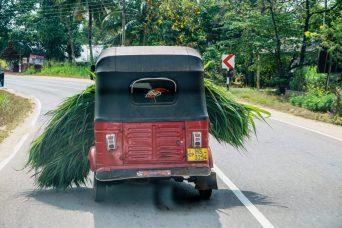 tuktuk tips voor het plannen van een rondreis