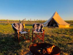Glamping In The Vines - Grenache Tent, Glamping in Adelaide, South Australia